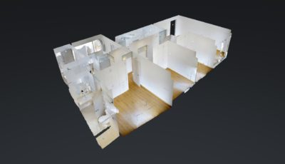 Belgica 3D Model