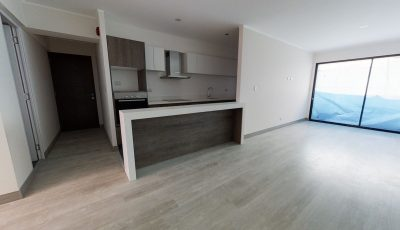 Edifica Inmobiliaria – Proyecto Artinto 3D Model